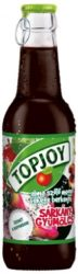 Topjoy rostos üdítő üveges Sárkánygyümölcs  25% - 250ml
